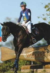 2007 - Wellpridex